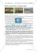 Naturmaterialien: Landart Preview 15