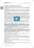 Wortfelder, Satzbau & Co. - ein vielfältiges Texttraining Preview 4