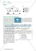 Die Duchenne-Muskeldystrophie Preview 2