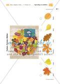 Vogel-Collage aus gepressten Laubblättern Preview 13
