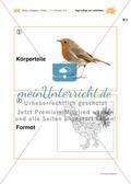 Vogel-Collage aus gepressten Laubblättern Preview 15