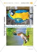 Vogel-Collage aus gepressten Laubblättern Preview 17