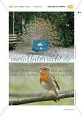 Vogel-Collage aus gepressten Laubblättern Preview 19