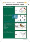 Vogel-Collage aus gepressten Laubblättern Preview 21