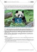 Deutsch-chinesische Beziehungen Preview 2