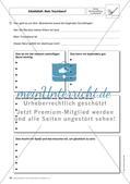 Fördermaterial für den DaZ-Unterricht: Klasse 9-10 - Teil 6 Preview 7