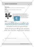 September: Die Kastanienminiermotte / Pflanzengallen Preview 3