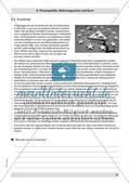 Finanzpolitik, Währungsunion und Euro Preview 4