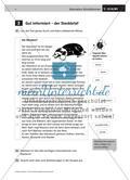 Schreibtipps für einen Steckbrief erstellen Preview 2