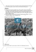 Planen und analysieren Preview 10