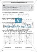 Quadratische Funktionen – Teil 4 Preview 2