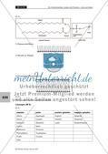 Lerntheke: Kohlenhydrate, Lipide und Proteine Preview 24