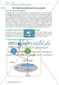 Die Zellentwicklung bei Krebs Preview 4