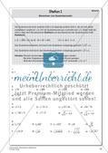 Quadratwurzeln und reelle Zahlen Preview 7