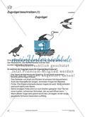 Beschreibung eines Zugvogels Preview 1
