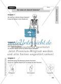 Körperbau und Funktion Preview 7