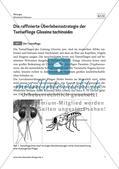 Die raffinierte Überlebensstrategie der Tsetsefliege Glossina tachinoides Preview 3