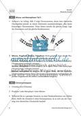 Haploider oder diploider Chromosomensatz? Preview 7