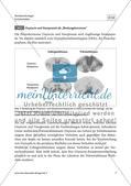Neurochemie der Monogamie - M1-M3 Preview 6