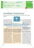 Unentdeckte Toxoplasmose Preview 1