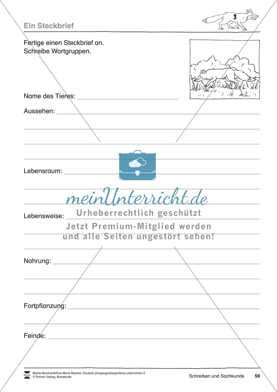 JÜL - Drei Differenzierungsstufen: