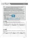 Basics Deutsch Grammatik Wortarten Verben: Arbeitsblätter und Lösungen Preview 1