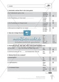 Rechtschreibung, s-Laute: Schnell-Tests Preview 1