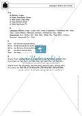 Wortarten: Nomen und Artikel: Regeln, Arbeitsblätter und Lösungen Preview 6
