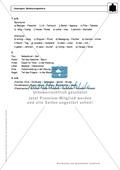 Wortkunde: Bedeutungslehre: Regeln, Arbeitsblätter und Lösungen Preview 5