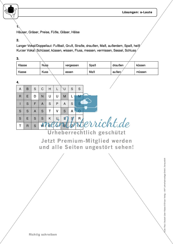 Rechtschreibung: s-Laute: Regeln, Arbeitsblätter und Lösungen Preview 3
