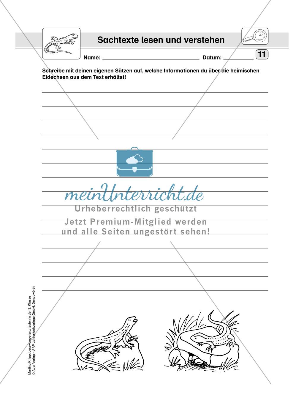Lesekompetenz testen: Sachtext: Wichtige Hinweise für die Lehrer, Übungen und Lösungen Preview 12
