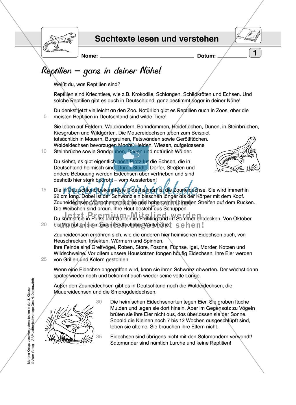 Lesekompetenz testen: Sachtext: Wichtige Hinweise für die Lehrer, Übungen und Lösungen Preview 2