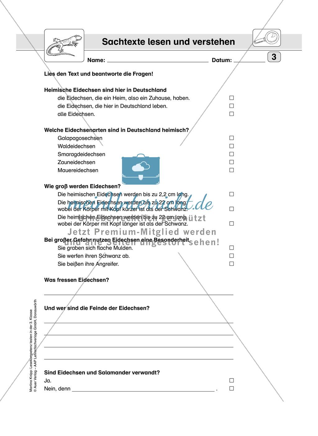 Lesekompetenz testen: Sachtext: Wichtige Hinweise für die Lehrer, Übungen und Lösungen Preview 4