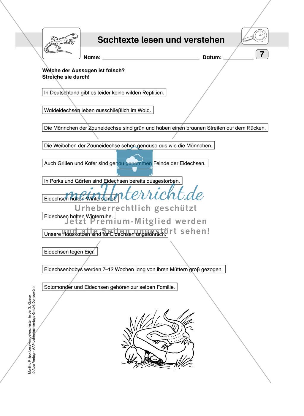 Lesekompetenz testen: Sachtext: Wichtige Hinweise für die Lehrer, Übungen und Lösungen Preview 8