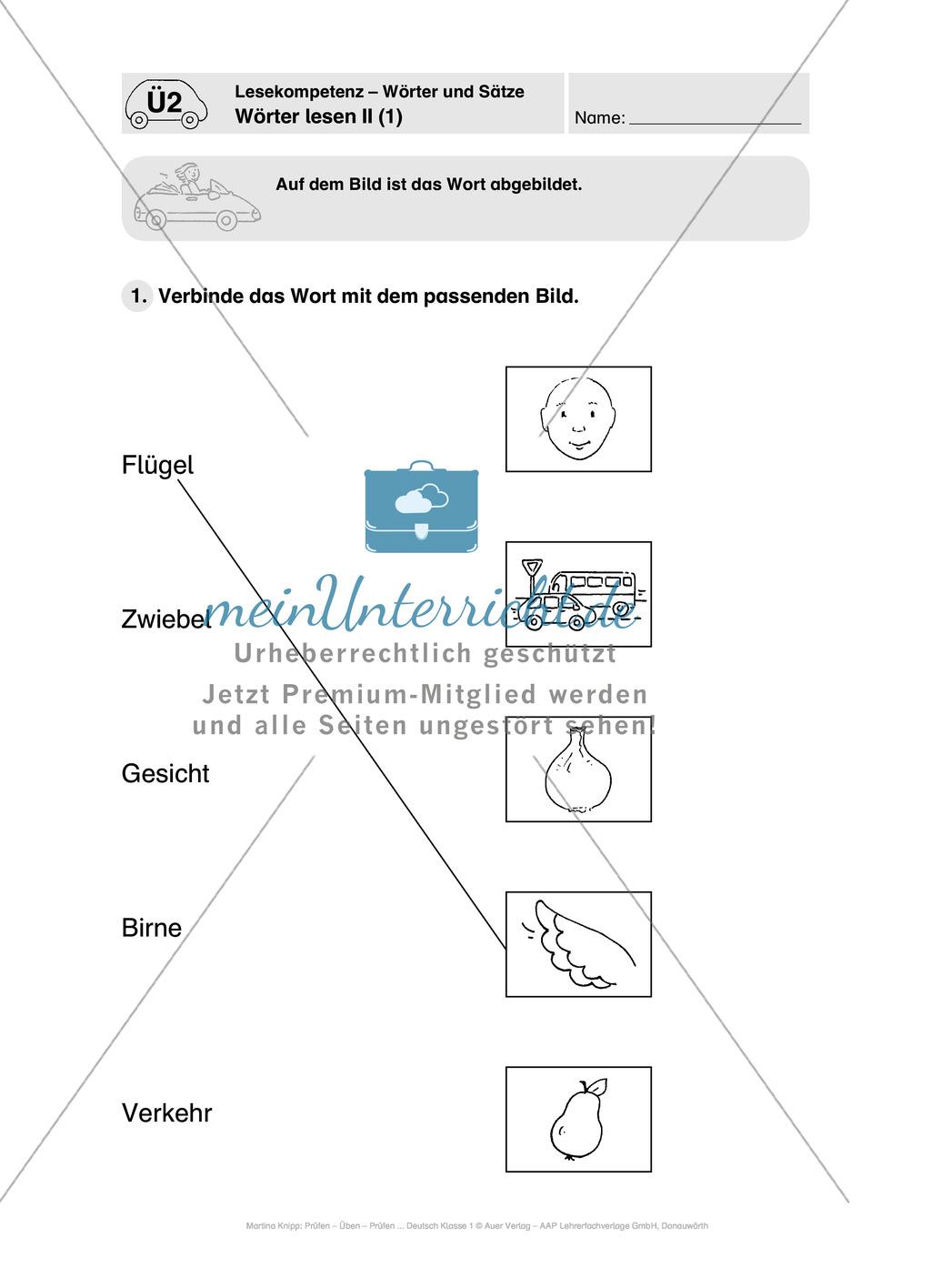 Lesekompetenz - Wörter und Sätze: Vorwort, Führerschein, Übungen und Tests Preview 9