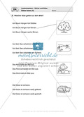 Lesekompetenz - Wörter und Sätze: Vorwort, Führerschein, Übungen und Tests Preview 18