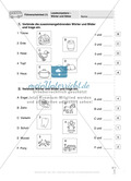 Lesekompetenz - Wörter und Sätze: Vorwort, Führerschein, Übungen und Tests Preview 20