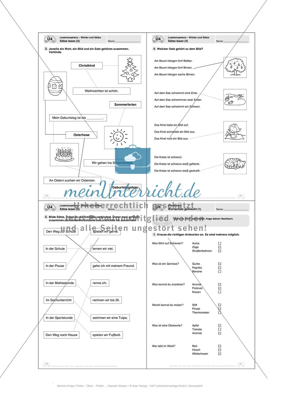 Lesekompetenz - Wörter und Sätze: Vorwort, Führerschein, Übungen und Tests Preview 24