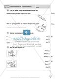 Rechtschreibung: Führerschein (Vortest, Testaufgaben, Führerschein-Vorlage) Preview 10