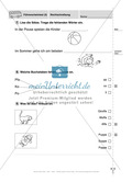 Rechtschreibung: Führerschein (Vortest, Testaufgaben, Führerschein-Vorlage) Preview 9