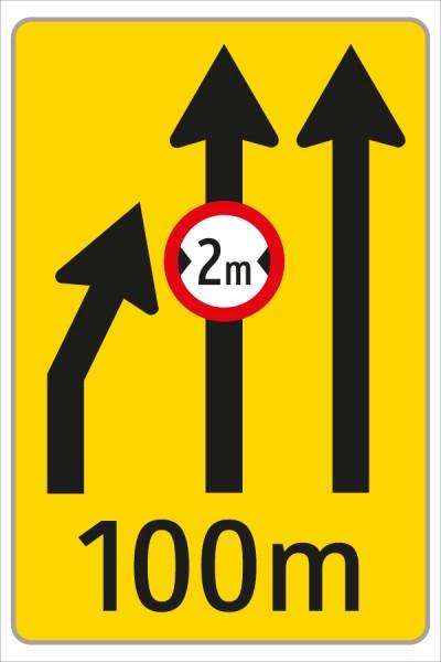 §53/16c Fahrstreifenanzeiger gelb – schwarz F6