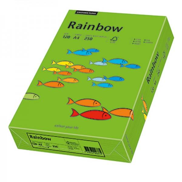 Rainbow Kopierpapier 88042678 A4 120g intensivgrün 250 Bl./Pack.