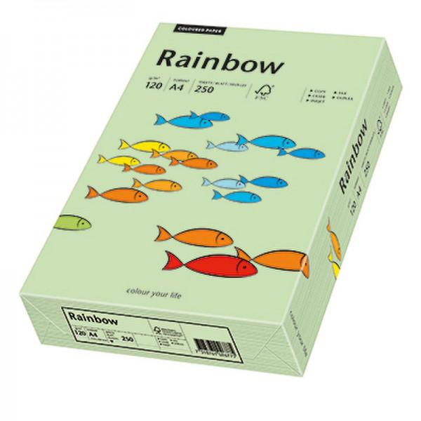Rainbow Kopierpapier 88042634 A4 120g mittelgrün 250 Bl./Pack.