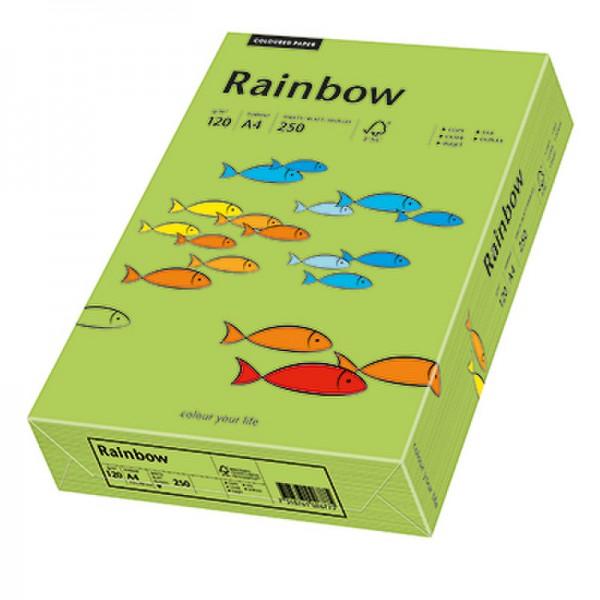 Rainbow Kopierpapier 88042656 A4 120g grün 250 Bl./Pack.
