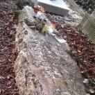 Nemes Nagy Ágnes síremléke