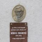Móricz Zsigmond-portré