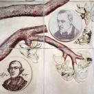 Életfa – A Nyírség kultúrhistóriai családfája