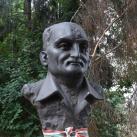 Szakács Ferenc