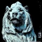 Országház főbejáratát őrző oroszlán