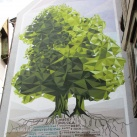 Lengyel-magyar barátság fája